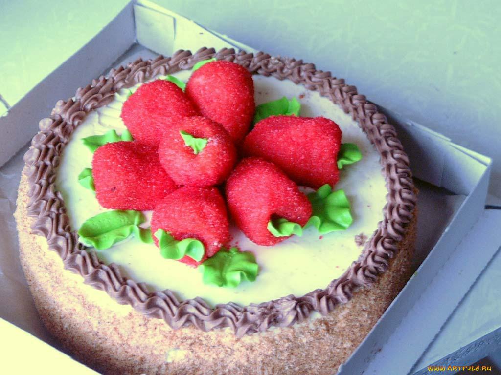 еда, торт, только